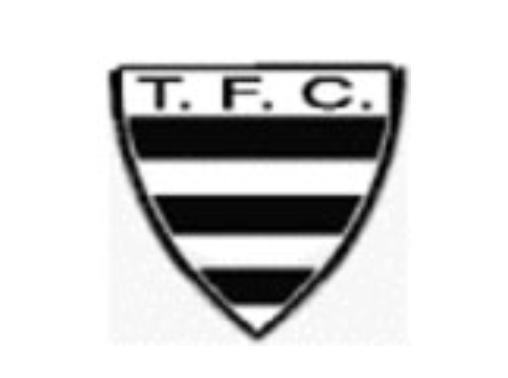 Tamoio Futebol Clube