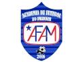 Academia de Futebol do Amazonas
