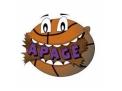 Associação Educacional, Esportiva e Cultural Apage